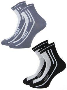 Носки мужские набор (2 пары) С401