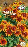 Rudbekiya-Kapuchchino-SeDek