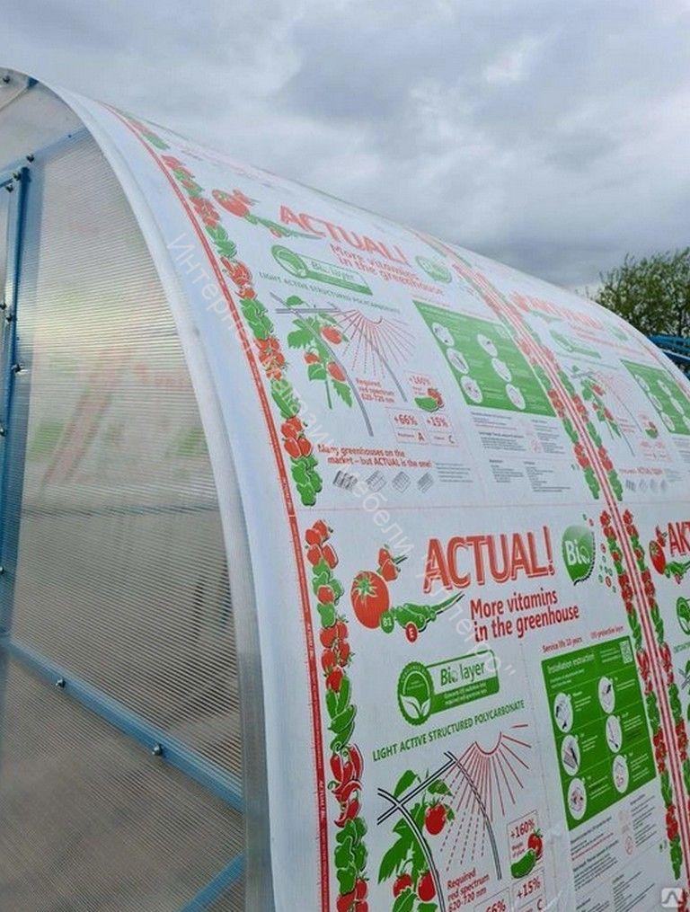 Сотовый поликарбонат, 2,10х6 м, s=6 мм Actual BIO светоактивный лист