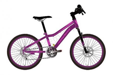 """Велосипед 20"""" Nameless J2200DW, фиолетовый, 13"""" (2021)"""