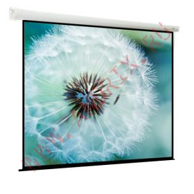 Экран моторизированный ViewScreen Breston (1:1) 305*305 (297*297) MW