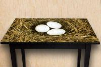 Наклейка на стол - Гнездо | фотопечать на стол в магазине Интерьерные наклейки