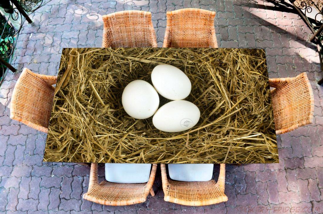 Наклейка на стол - Гнездо