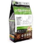 ProBalance Starter Корм сухой для щенков до трех месяцев и собакам в период беременности и лактации (2 кг)