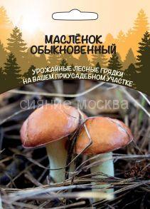 Масленок Обыкновенный (Уральский Дачник)