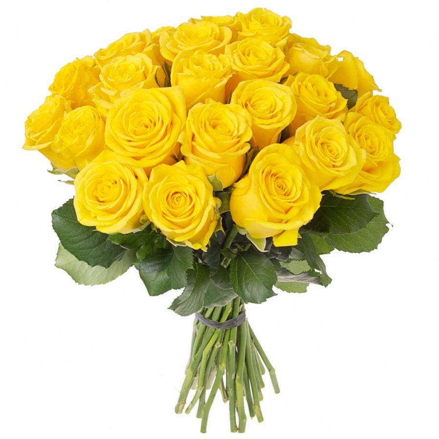 Роза желтая 50см от 11шт