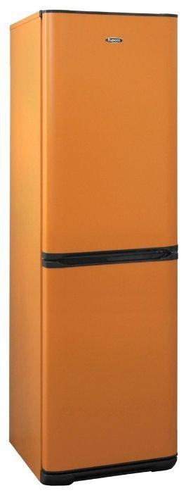 Холодильник Бирюса T631 Оранжевый