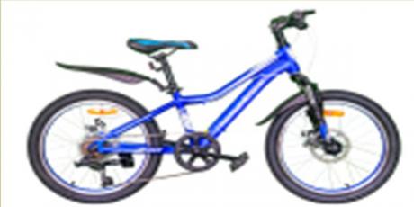 """Велосипед 20"""" Nameless J2200D, синий/белый, 13"""""""
