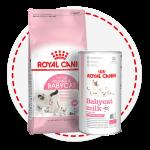 Специальное питание для котят, беременных и  кормящих кошек