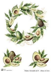 Avocado set 4