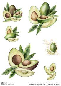 Avocado set 3
