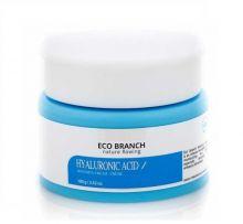 Eco Branch Интенсивный увлажняющий крем с гиалуроновой кислотой, 100 мл