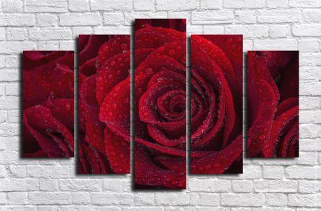 Модульная картина Красная роза