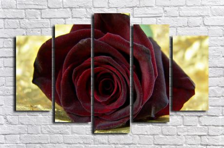 Модульная картина Бутон розы