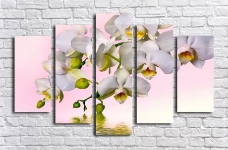 Модульная картина Ветка белой орхидеи