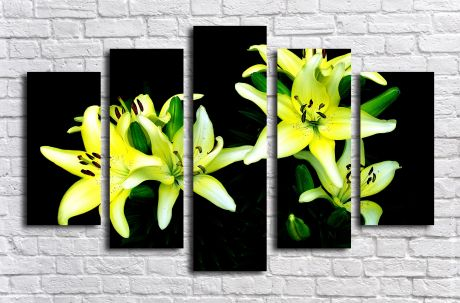 Модульная картина Лилии на черном фоне