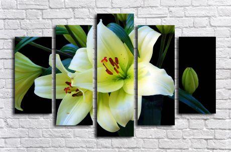 Модульная картина Цветок лилии