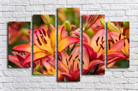 Модульная картина Оранжевые лилии