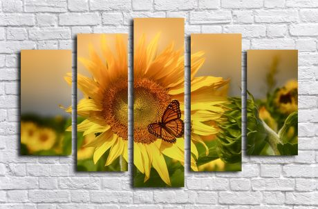 Модульная картина Подсолнух и бабочка