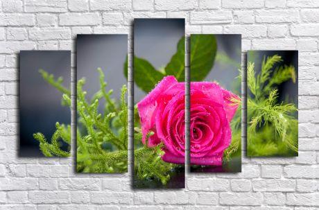 Модульная картина Розовая роза