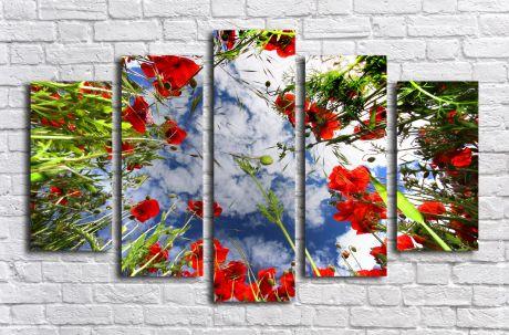 Модульная картина Цветы в поле