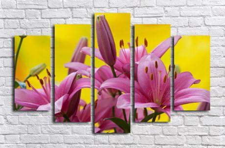 Модульная картина Розовые лилии