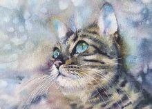 Почтовая открытка Акварельные котики 10