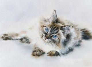 Postcard Watercolor cats 6