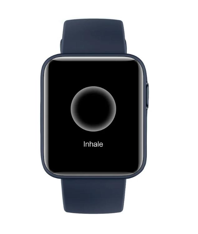 Умные часы Xiaomi Mi Watch Lite ( Темно-синий )
