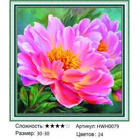 Алмазная мозаика на подрамнике HWH0079