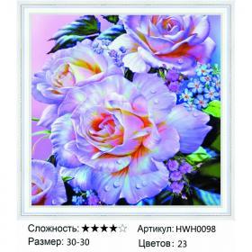 Алмазная мозаика на подрамнике HWH0098