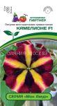 Petuniya-mnogocvetkovaya-pryamostoyachaya-Mon-Amur-Kamelione-F1-Partner