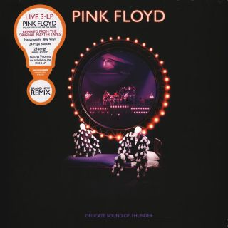 Pink Floyd - Delicate Sound Of Thunder 1991/2019 3 LP