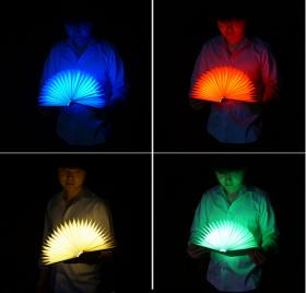 """""""Яркая книга"""" Light illumination book"""
