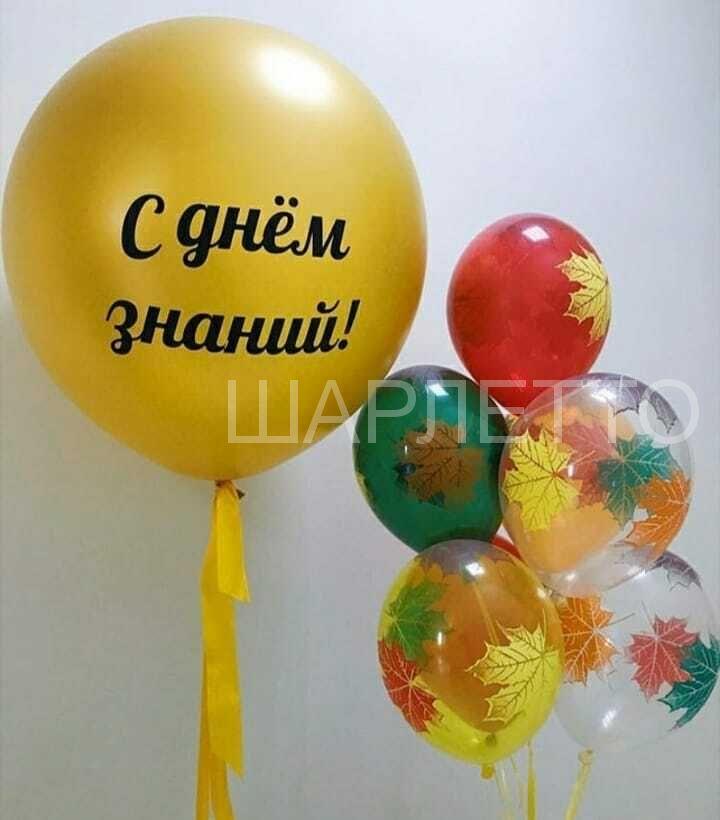 "Набор ""1 сентября"" №7"