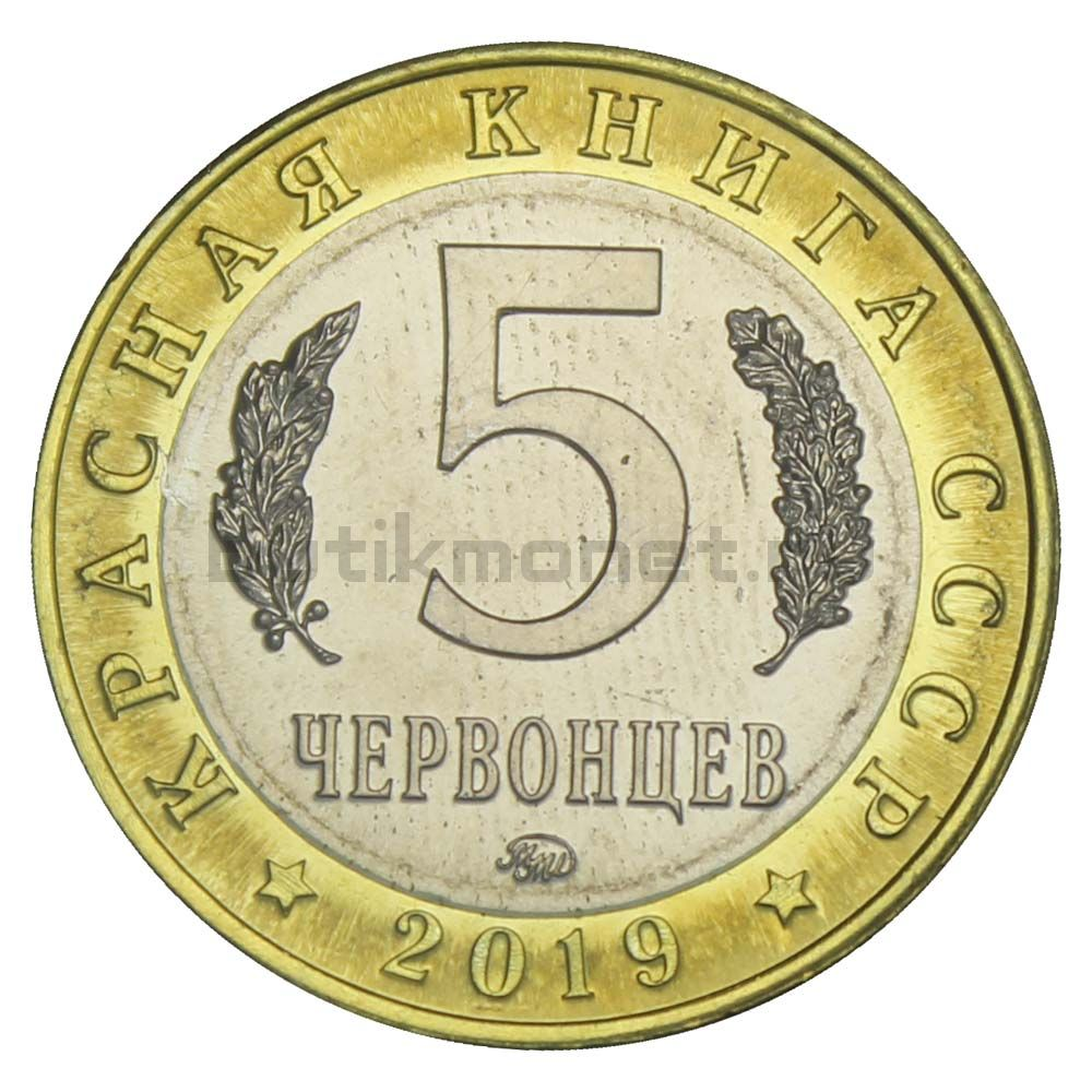 Россия Монетовидный жетон 5 червонцев 2019 ММД Дикуша (Красная Книга)