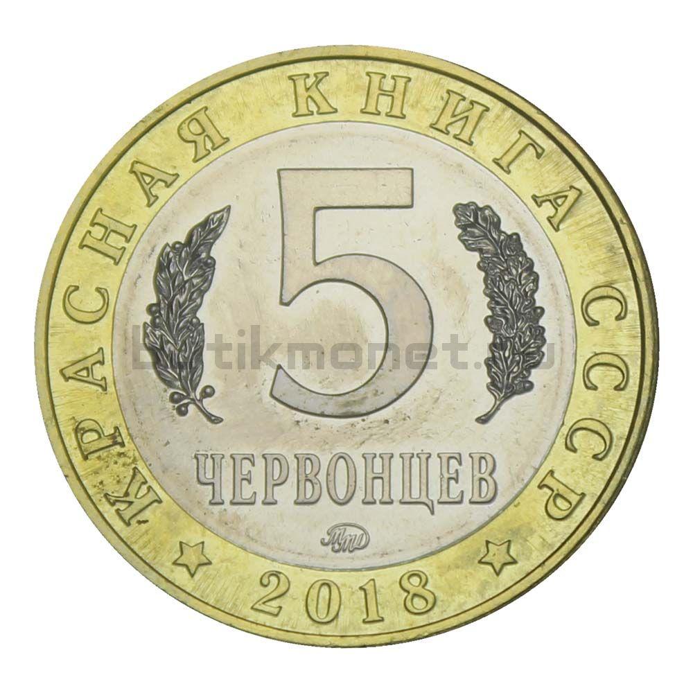 Россия Монетовидный жетон 5 червонцев 2018 ММД Европейский Хариус (Красная Книга)