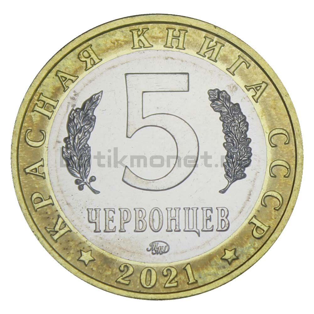 Россия Монетовидный жетон 5 червонцев 2021 ММД Тростниковая Сутора (Красная Книга)