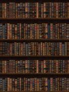 """Фон стена """"Bookold №1"""" 2х1.5м"""