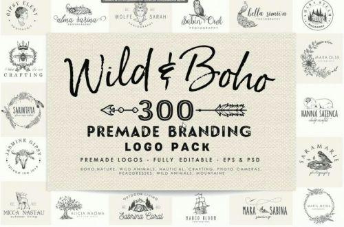 [Creative market] Набор из 300 логотипов / Wild and Boho Premade logo Bundle (Corvus Attic)