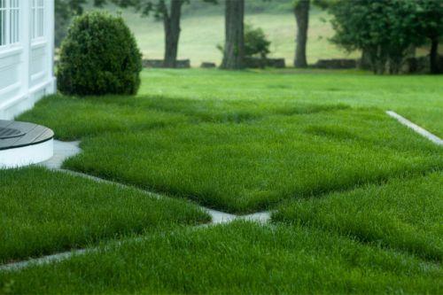 [Международная Школа Дизайна] Идеальный газон своими руками: пошаговое руководство (Анна Шмарова)