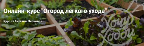 [ХочуХобби]Огород легкого ухода (Татьяна Чернова)