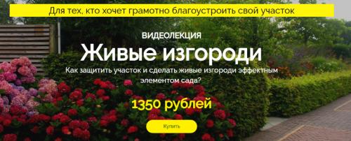 Живые изгороди (Наталья Мягкова)