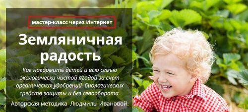 Земляничная радость (Людмила Иванова)