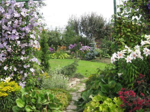 Плодовый сад в экстремальных условиях (Лариса Маслова)