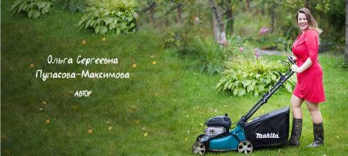 Малоуходный сад.1, 2 и 3 Дни (Ольга Пупасова-Максимова)