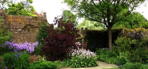 Как красиво задекорировать забор кустарниками (Наталья Мягкова)