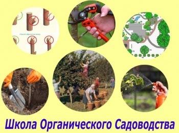 Базовый Курс Органического Садоводства (Виктор Гуржий)