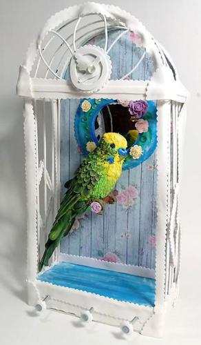 Запись закрытых МК 'Волнистый попугайчик' и 'Клетка-ключница', фом-арт (Татьяна Шмелева)
