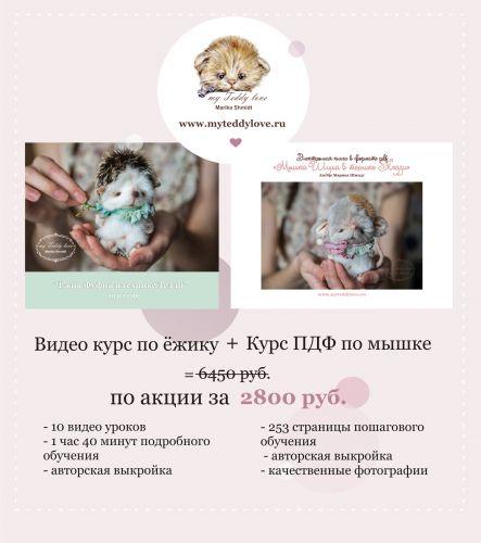 Видео курс по ёжику и электронная книга по мышке (Марика Шмидт)